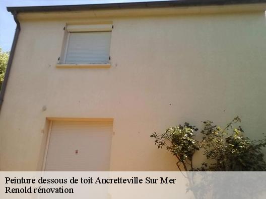 finest selection 88102 66456 Peinture dessous de toit à Ancretteville Sur Mer tél: 02.85 ...